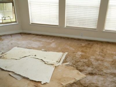 Water damage restoration in Sedona by Premier Carpet Cleaning & Restoration LLC