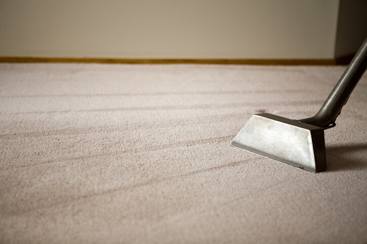Steam Cleaning by Premier Carpet Cleaning